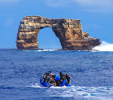 Aqua diving galapagos