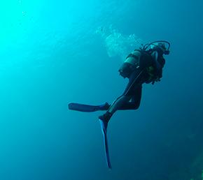 diving Aqua yacht galapagos islands dive